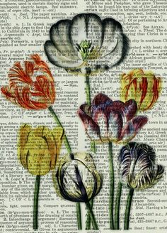 tulips - vintage tulip artwork printed on page from old dictionary.I can use the old book of music scores to do something Book Page Art, Book Art, Art Journal Pages, Art Pages, Vintage Diy, Newspaper Art, Dictionary Art, Bible Art, Art Plastique