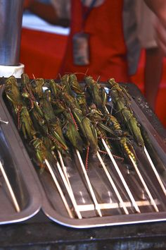 China Street Food - Locust, Cricket? Gross Food, Weird Food, Scary Food, China Food, China China, Exotic Food, People Eating, World Recipes, Different Recipes