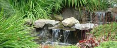 Jan Johnsen, Water in the Garden all day class Friday April 17 at NY Botanical Garden 10 - 3:30 pm   http://adulted.nybg.org:8080/cart65/jsp/session.jsp?sessionId=154LAN433&courseId=154LAN433&categoryId=ROOT