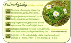 Info sedmokraska - My site Raw Food Recipes, Healthy Recipes, Organic Beauty, Korn, Natural Health, Life Is Good, Detox, Health Fitness, Ale