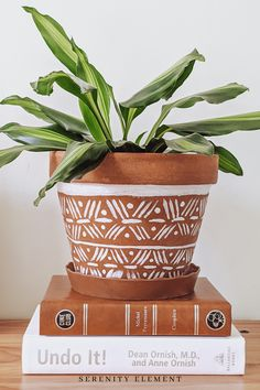 Nothing better to keep us busy at home during self-isolation than a DIY project. Check out my hand painted plant terracotta plant pot. I love boho inspired home decor, so tried my hand at creating it myself. Absolutely love how it turned out. Terracotta Plant Pots, Painted Plant Pots, Painted Flower Pots, Painting Terracotta Pots, Pottery Painting Designs, Flower Pot Design, Cactus Y Suculentas, Boho Diy, Clay Pots