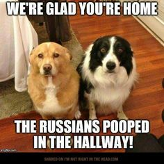 There's no proof, but yeah... Russians!