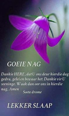 Healing Bible Verses, Evening Greetings, Evening Quotes, Goeie Nag, Angel Prayers, Goeie More, Afrikaans Quotes, Good Night Quotes, Special Quotes
