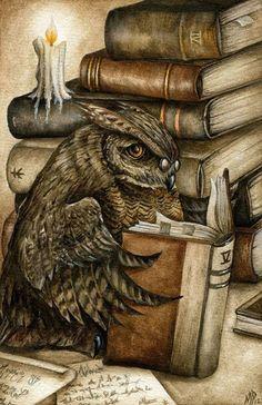 Buho lector, buho sabio (ilustración de Marc Potts)