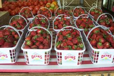 Let's Pick Strawberries!   Deans Farm Market - Wilson, NC