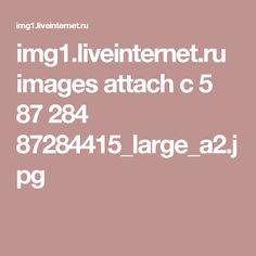 img1.liveinternet.ru images attach c 5 87 284 87284415_large_a2.jpg