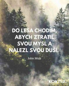 Citáty | Cesta Lásky | Stránka 38 Motto, Quotations, Motivation, Words, Quotes, Type 3, Theater, Signs, Facebook