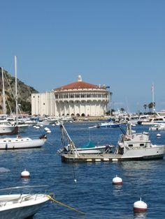 Catalina Island!