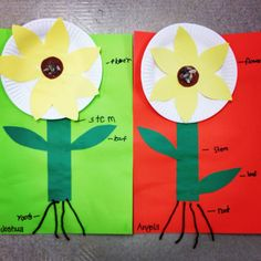 Bbc bitesize 2 for grades 4 6 the link for bitesize 1 s http parts of a flower students cut out and label parts of a flower cut ccuart Images