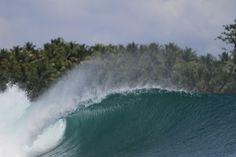 E-Bay / Mentawai Islands / Indonésia