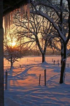 Gorgeous winter day !