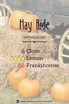 Fall Diffuser Blends Fall diffuser blend that will feel like you're on a traditional hay ride. Add essential oils of Clove, Lemon and Frankincense to your aromatherapy diffuser to enjoy this fresh and outdoorsy scent. Fall Essential Oils, Essential Oil Diffuser Blends, Essential Oil Uses, Doterra Diffuser, Clove Essential Oil, Diffuser Recipes, Be Natural, Natural Living, Aromatherapy Oils