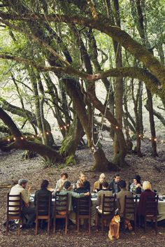 Even if the food is very simple, Pop up dining in the middle of a remote forest...how lovely is this?! popuprepublic.com