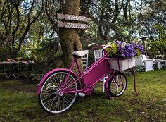 Nuestras bicis antiguas dan un toque especial!