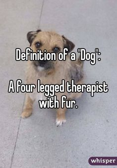 "Definition of a ""Dog"":  A four legged therapist with fur."