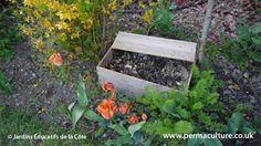 Making your own compost with worms, in whatever size garden you have! #vermicomposting #GYO