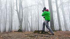 Landscape Photography: Foggy Forests with 50mm Lens Experiment