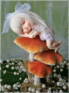 Sweet fairy on mushrooms~not sure who artist is, but this little faery sure is cute♥.. i so want one ....