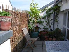 Balkon Sichtschutz Ideen Holz Zweige Pflanzen Rustikal Aussehen ... Balkon Sichtschutz Pflanzen Ideen
