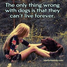 The only thing wrong with dogs is that they can't live forever.