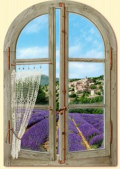 VENTANA CON LAVANDA Provence FRANCIA