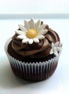 Sugar Free Chocolate Cupcakes- Best Diabetic Desserts