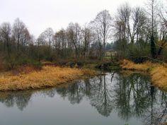 Salmon Creek Trail, Vancouver, WA