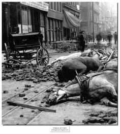 At 5:13 a.m., April 18, 1906 an earthquake estimated at close to 8.0 on the Richter scale strikes San Francisco, California, killing hundreds of people as it topples numerous buildings. The quake was caused by a slip of the San Andreas Fault over a segment about 275 miles long, and shock waves could be felt from southern Oregon down to Los Angeles.