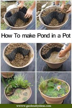 How To make Pond in a Pot