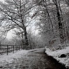 Winter landscape taken during a trip around Hasenbergsteige in Stuttgart by David Blackwell, via Flickr