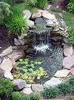 backyard - Bing Afbeeldingen