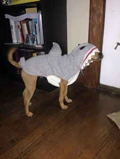 Carlos, the land shark! More handmade wool sweaters on our website!