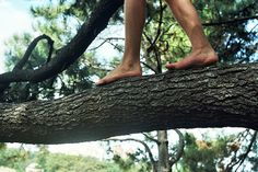 She gingerly stepped along the large tree branch, her arms outstretched. The rough bark beneath her bare feet reminded her of the countless hours she had spent in the woods and dirt with her siblings, especially Andrew. Where had those blissful days of ignorance gone?