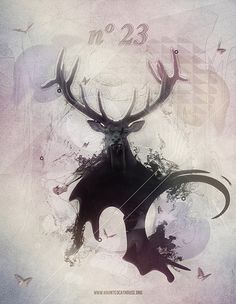 25 graphics and original illustrations around the deer