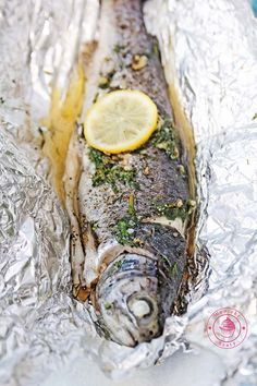 Camembert Cheese, Grilling, Fish, Meat, Ethnic Recipes, Blog, Crickets, Pisces, Blogging