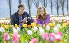 Video - Tulips in Spring | Hallmark Channel