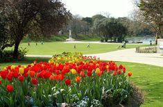 Alexandra Park, Hastings