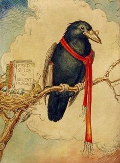 Charles Van Sandwyk (Canadian artist born - Crow w/ Field Guide to Decent Humans Crow Art, Raven Art, Bird Art, Art And Illustration, Vintage Bird Illustration, Choucas Des Tours, Fantasy Character, Quoth The Raven, Jackdaw