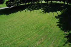 open air theater    Buildings by arch. Kay Fisker  Landscape and park by arch. Carl Theodor Sorensen