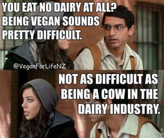 cow's are not milking machines, milk is for calves, diary is cruel #vegan truth…