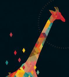 Colours Giraffe