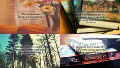 guotes about reading | Art : My Favorite Reading Quotes