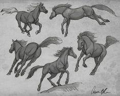 Horse Drawings, Animal Drawings, Art Drawings, Drawing Art, Animal Sketches, Art Sketches, Foto Cartoon, Horse Sketch, Horse Anatomy
