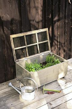 DIY herb garden from an old window. Container Herb Garden, Diy Herb Garden, Succulent Gardening, Veg Garden, Easy Garden, Garden Beds, Gardening For Beginners, Gardening Tips, Patio Pergola