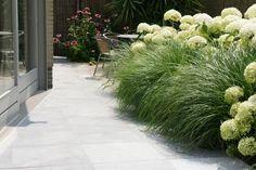 Tuin met lichte zandgrond: Hydrangea arborescens 'Annabelle' en Pennisetum