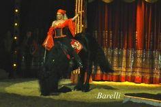 tour, zirkus, manege, circus-zirkus, circus-barelli, zirkus-barelli…