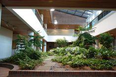 Internal Garden Design – Incredible Relaxing Indoor Garden Design for Supplying Oxygen Inside Of Your