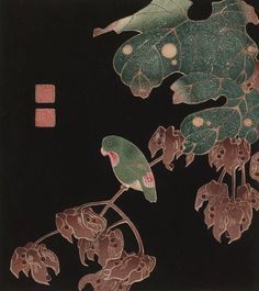 Green Parrot on Vine, no. 2 from the series Six Genuine Pictures, by Itō Jakuchū 「伊藤 若冲」(1897)