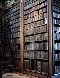 bluepueblo:Melk Library, Austria photo via jillag