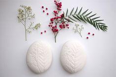 Image of herbarium stone · schinus molle